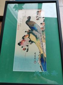 歌川广重的花鸟风月 《菊花与雉子》日本原装画框 大短册判 复刻浮世绘