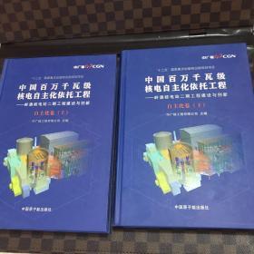中国百万千瓦级核电自主化依托工程——岭澳核电站二期工程建设与创新. 自主化卷上下