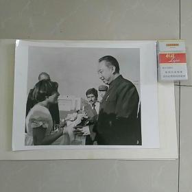 稀缺,大照片〈30.7㎝x23.3㎝〉,1978年华国锋主席访问伊朗,德黑兰少女向华主席献花