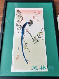 一树独先天下春 《梅花 极乐鸟》 歌川广重短册绘花鸟风月之二 悠悠洞复刻浮世绘 不带框
