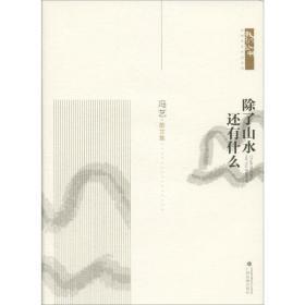 正版   除了山水 还有什么冯艺广西民族出版社9787536373143文学 书籍 新华书店旗舰店官网