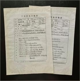 全国侨联原副主席、北京市侨联原主席 林其珍 干部任免呈报表 手稿两份2页