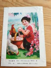 鸡扬春色,用塑料袋封