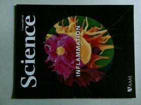 英文科学杂志 Science 2013/01/11 NO.6116 外文原版英国着名杂志