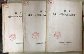 江西省 侏罗——白垩系火山岩及其矿产(上中下)