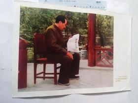 1949年毛主席在看解放南京的胜利捷报  (可用配册)50件商品收取一次运费。如图,大小品自定。