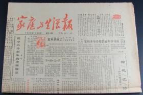 家庭生活报1985年11月5日总第50期(4版)
