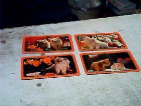 四只小猫   1987年  年历卡    4张
