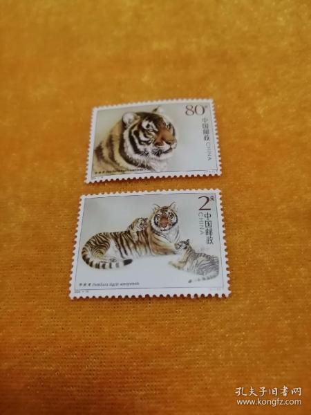 2004年19华南虎