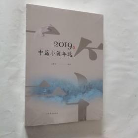 2019年中篇小说年选