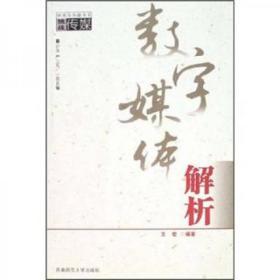 数字媒体解析 西南师范大学出版社王宏