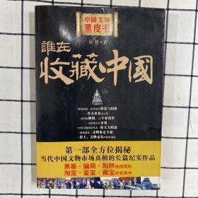 谁在收藏中国:中国文物黑皮书