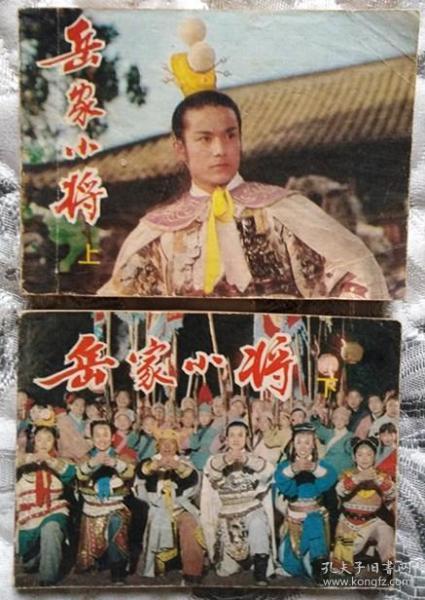 岳家小将(上下二册)