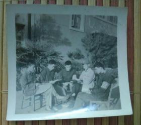 坐着阅读的五男子合影照片