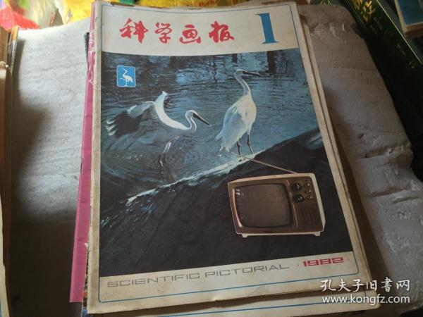 科学画报1982-1