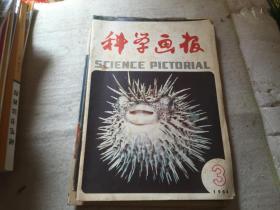 科学画报1984-3