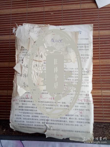 王应云  翻译手稿  《孤星血泪》