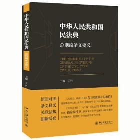 库存书 中华人民共和国民法典:总则编条文要义