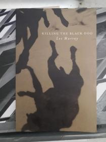 Killing the Black Dog: A Memoir of Depression-《杀死黑狗:抑郁症回忆录》