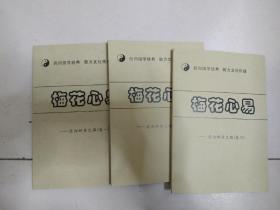 梅花心易--迈向神奇之路 全三册