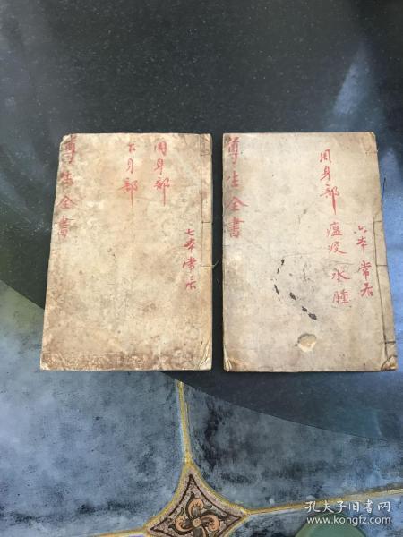 嵩厓尊生全书 卷十至卷十三2册合售 周身部下身部 清朝木刻本医方药方线装本