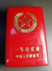 自卫反击战役最高荣誉一等功奖章。退役