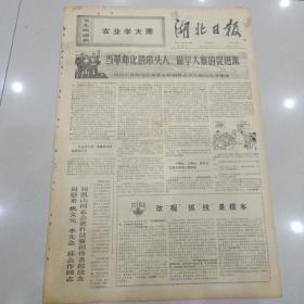 文革报纸湖北日报1971年4月23日(4开四版)举旗抓纲领好路学习大寨绘新图;坚决扞卫马克思主义的哲学路线。