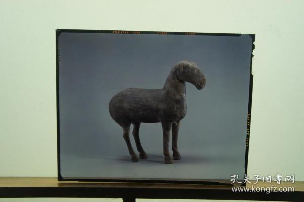 大尺寸汉代陶绵羊反转片一种