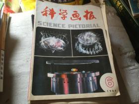 科学画报1984-6