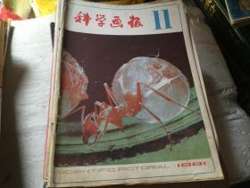 科学画报1981-11