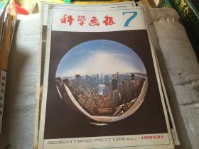 科学画报1981-7
