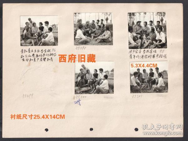 知青老照片,1975年云南晋宁县知青办主任和公社书记,在新街公社看望知识青年,老贫农给知青做选种示范等等10张