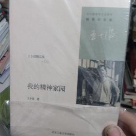 王小波精选集我的精神家园
