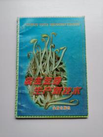 袋生豆芽生产新技术