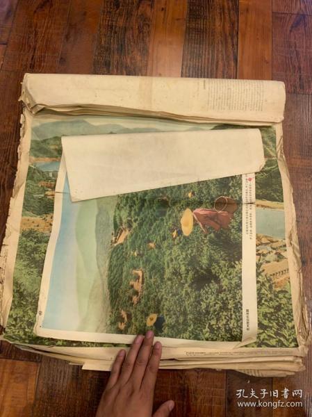 【铁牍精舍】【低价处理】50年代末60年代初《杭州附近的茶园》等海报10张