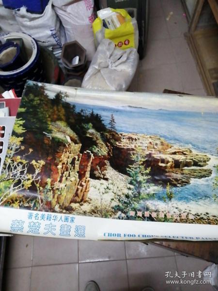 1993年挂历。着名美籍华人画家蔡楚夫画家。海南摄影美术出版。宽一米多,