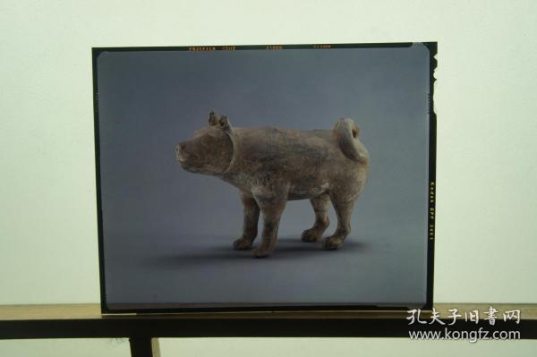 大尺寸珍贵文物汉陶狗反转片2种
