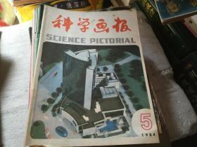科学画报1984-5