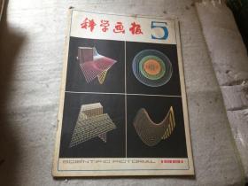 科学画报1981-5