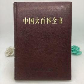 中国大百科全书 21