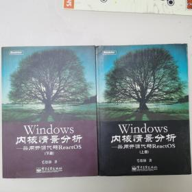 Windows内核情景分析:采用开源代码ReactOS 上下两册