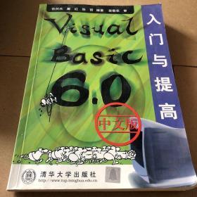 Visual Basic 6.0中文版入门与提高