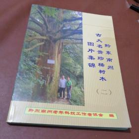 黔东南州古大名贵珍稀树木图片集锦