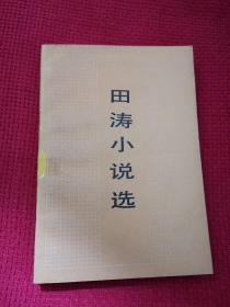 田涛小说选  人民文学出版社