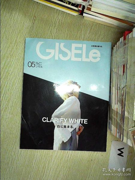 GISELE  2019 5