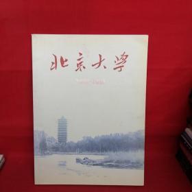 北京大学(2002-2003)