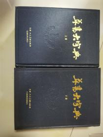 草书大字典(上下)
