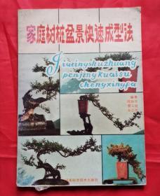 家庭树桩盆景快速成形法 86年版 包邮挂刷