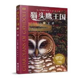 猫头鹰王国:11.王者  (纽伯瑞奖得主凯瑟琳·拉丝基潜心十年创作·全球畅销三千万册)