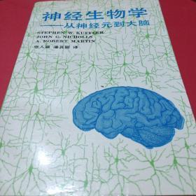 神经生物学-从神经元到大脑